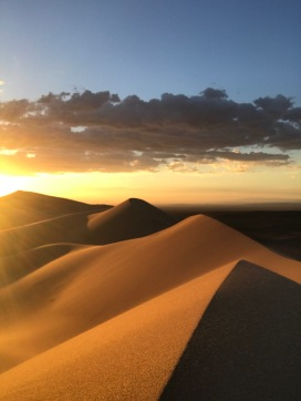 Desert de Gobi en été