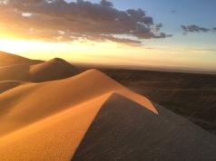 Dunes de sable Gobi