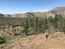 Collines mongoles en Arkhangai