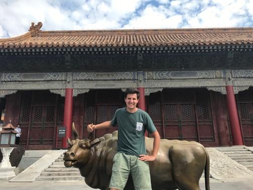 Le taureau tire la langue dans la Cité Interdite