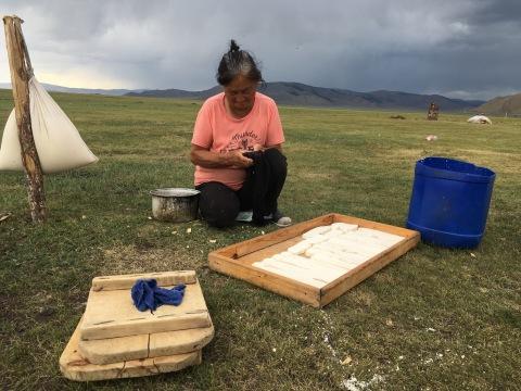 Fabrication artisanale du fromage de chevre en Mongolie