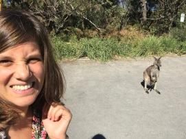 Première rencontre avec un kangourou :D
